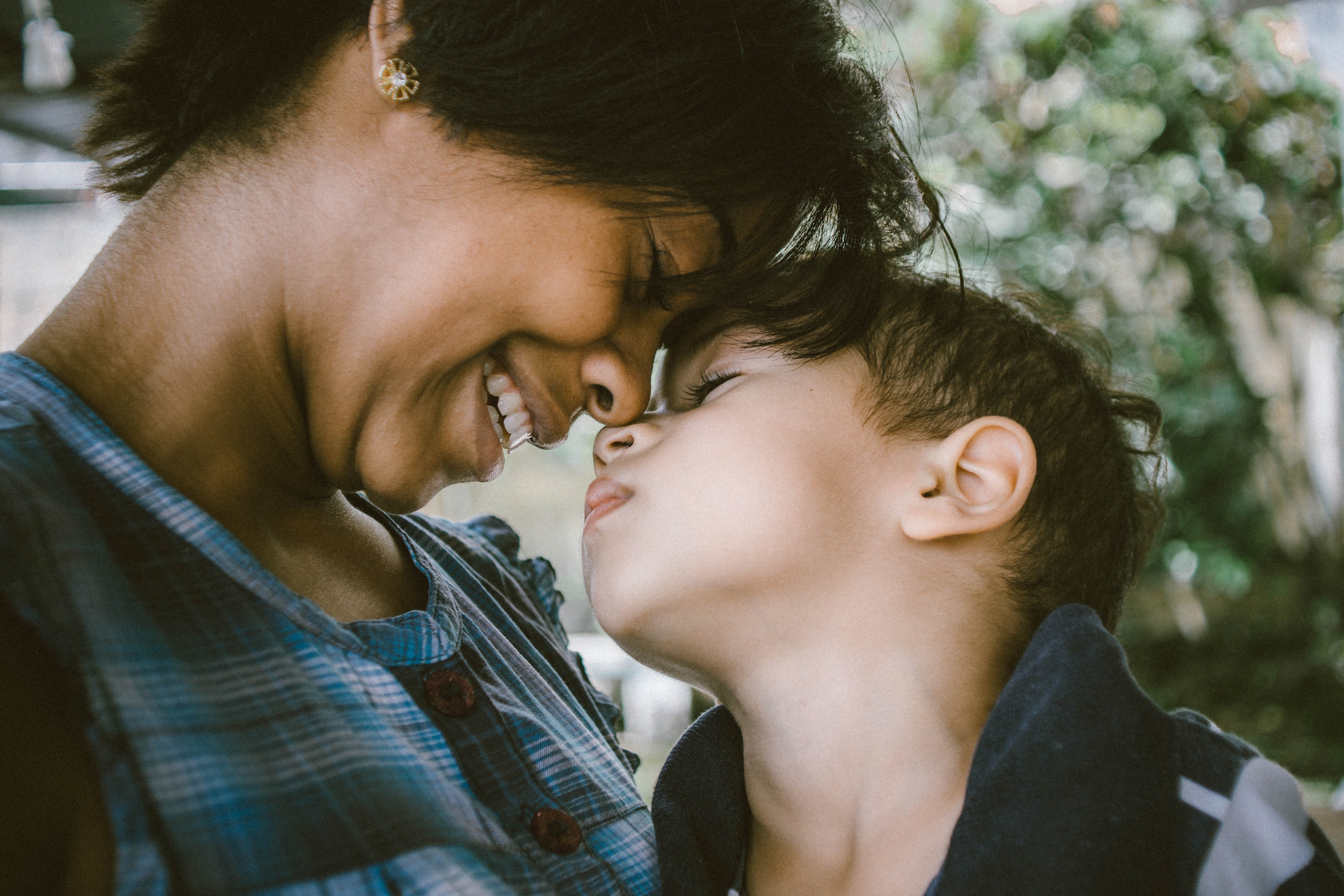 Experts at the New York University School of Medicine have found that maternal instincts may depend on a specific set of brain cell signals.