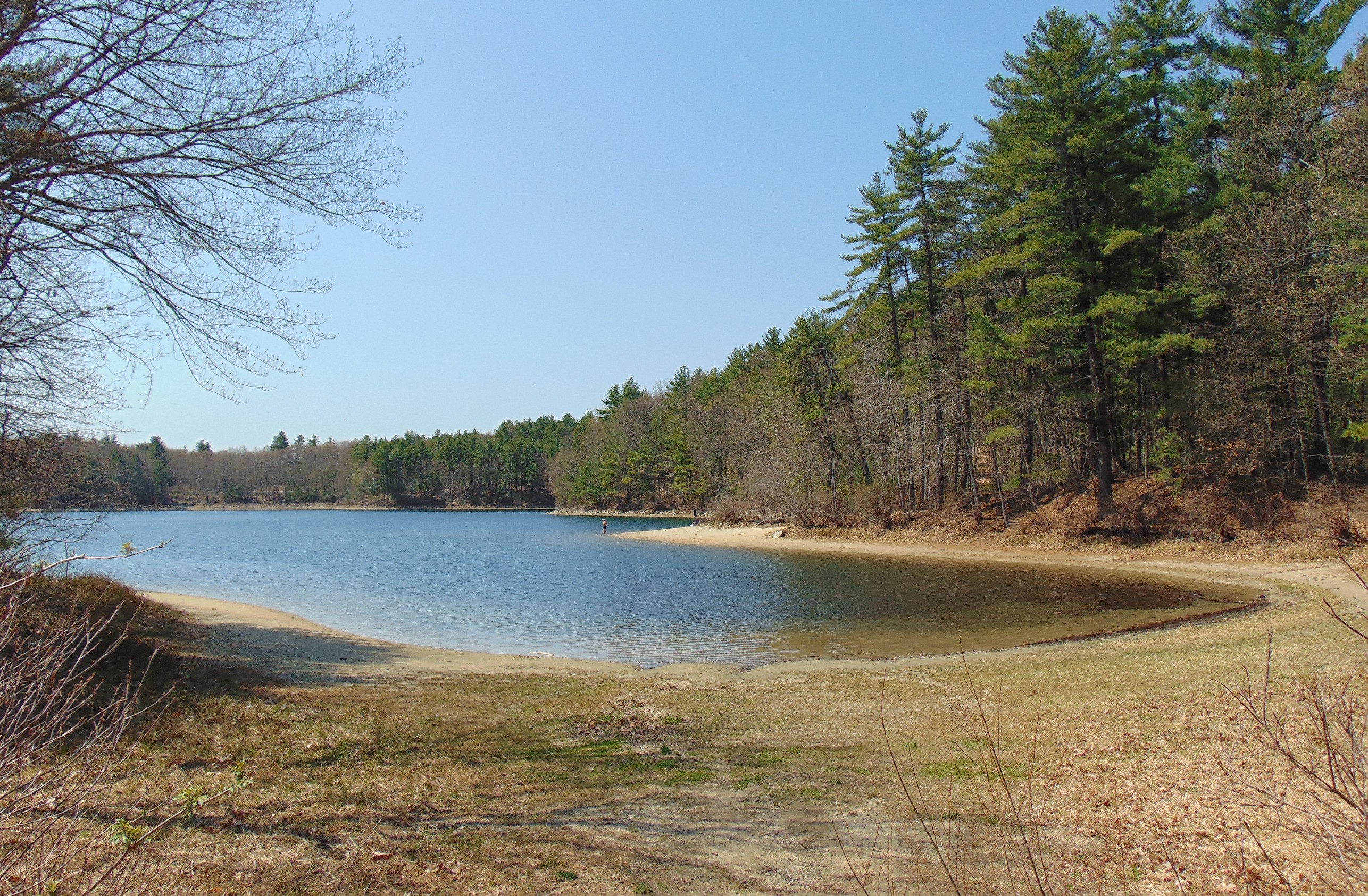 After years of human activity, climate change, and pollution, the Walden Pond of today is different from the iconic, idealistic setting Thoreau praised in his works.