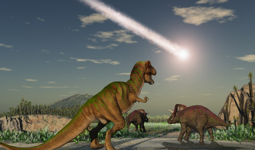 Dinosaurs were already on their way out when the asteroid struck