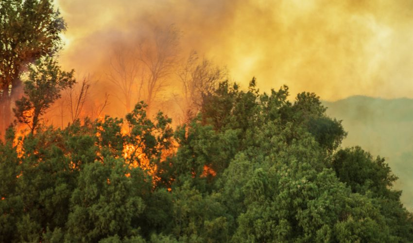 A new study from Oregon State University (OSU) has found that large wildfires cause increases in river flow that can last for years or even decades.