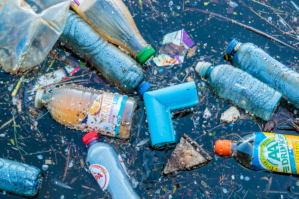 The new accidental discovery of a plastic-eating enzyme may be the key to battling the plastic pollution crisis.