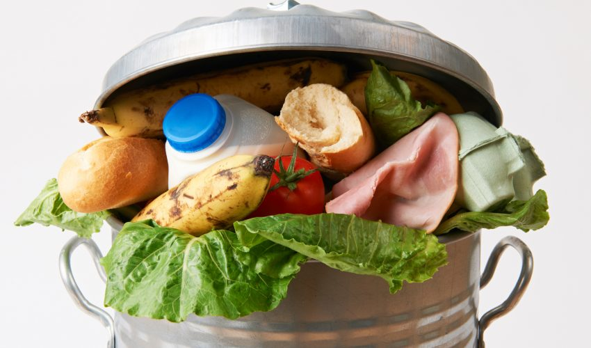 People waste almost  a pound of food daily