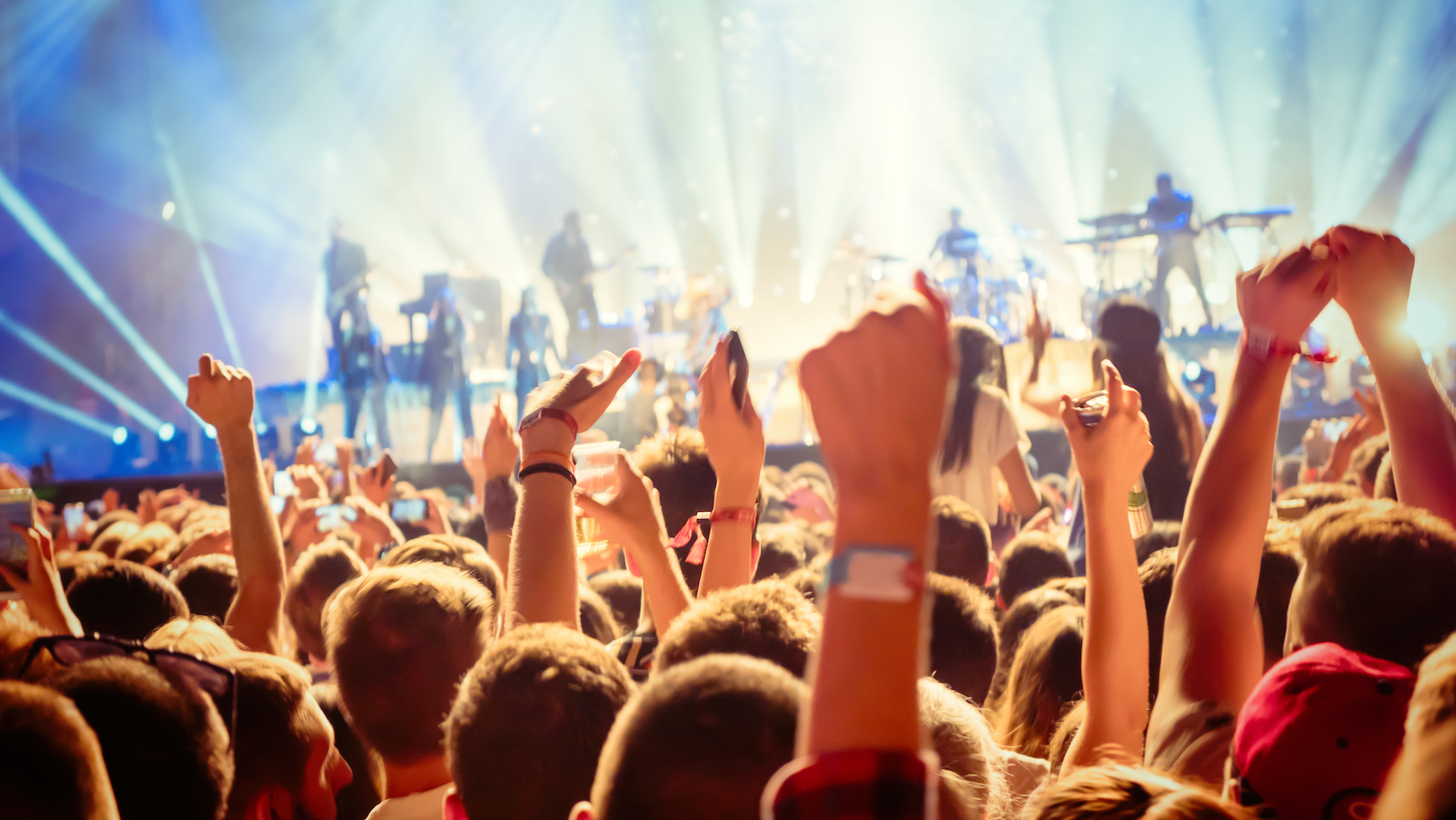 According to new research from experts at the University Medical Center Utrecht in the Netherlands, music fans should take precautions to prevent hearing damage at music festivals.