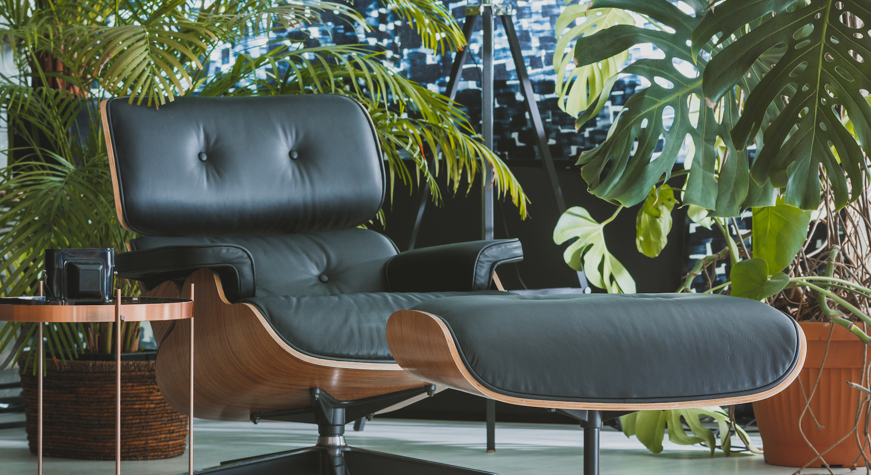 Airtight buildings are increasing in popularity but raise the risk of indoor air pollution. But now, research has shown that indoor plants can improve air quality in these self-contained environments.