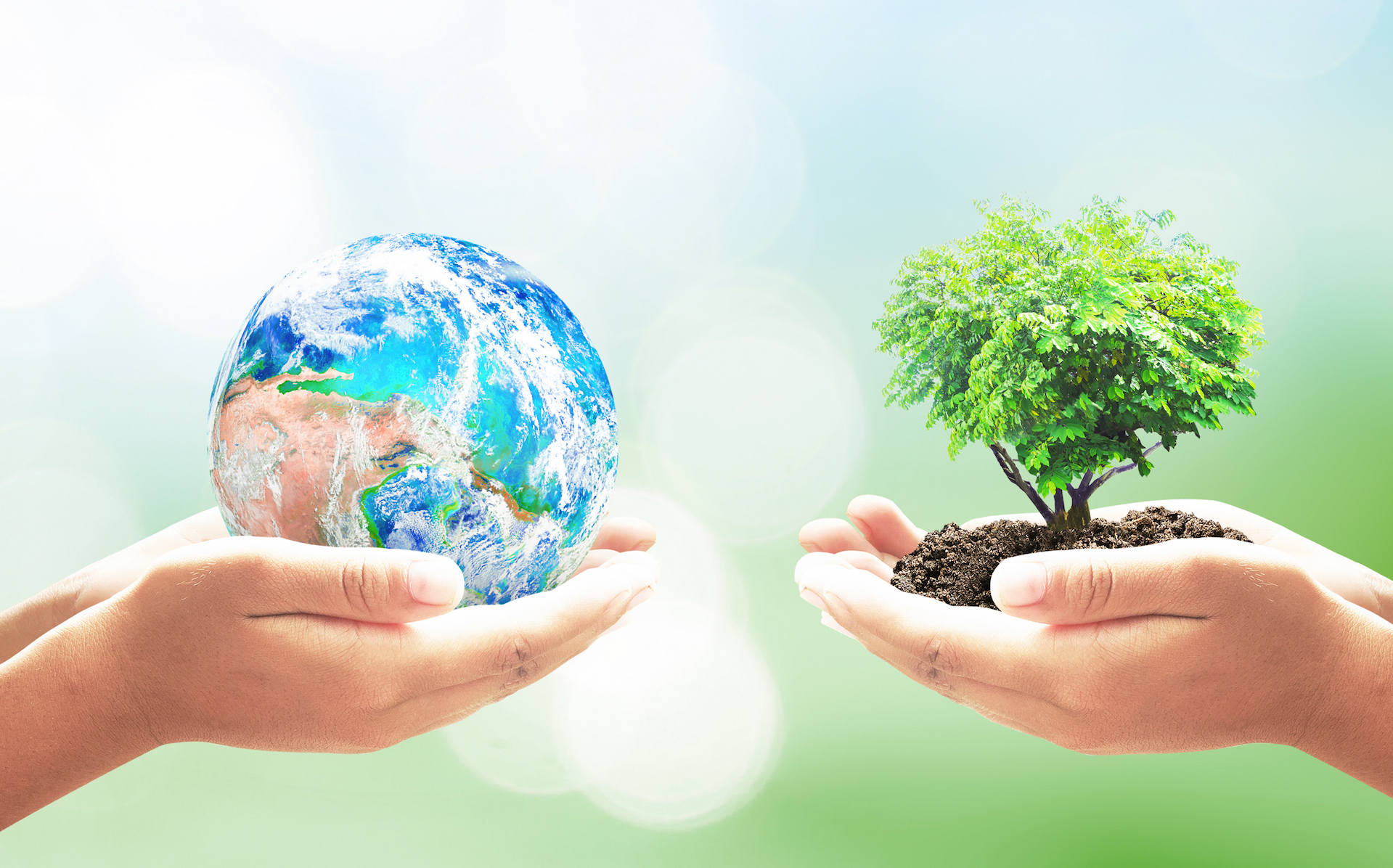 Earth Day was first envisioned in its current form during the social struggles of America in 1970, and has since become an important annual tradition of environmentalism.