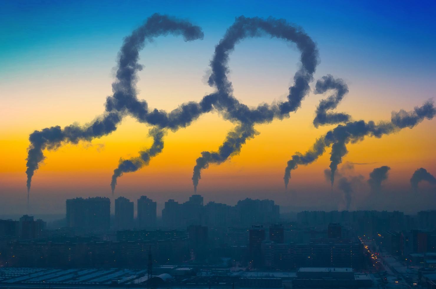Image result for carbon capture