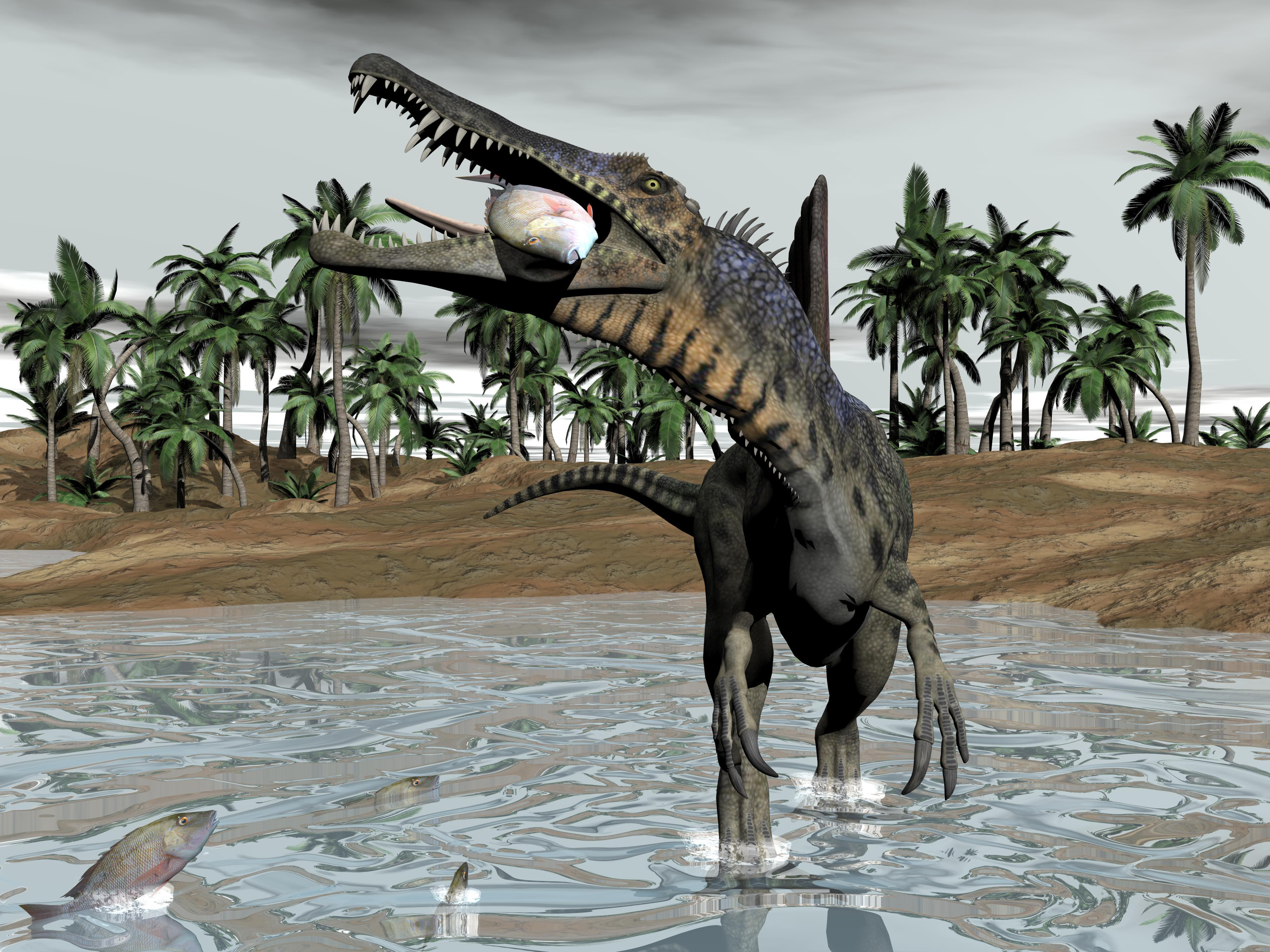 Researchers revealed that predatory, bird-like theropod dinosaurs that existed during the Upper Cretaceous in Spain and Canada, all used the puncture-and-pull bite method to kill and consume their prey.
