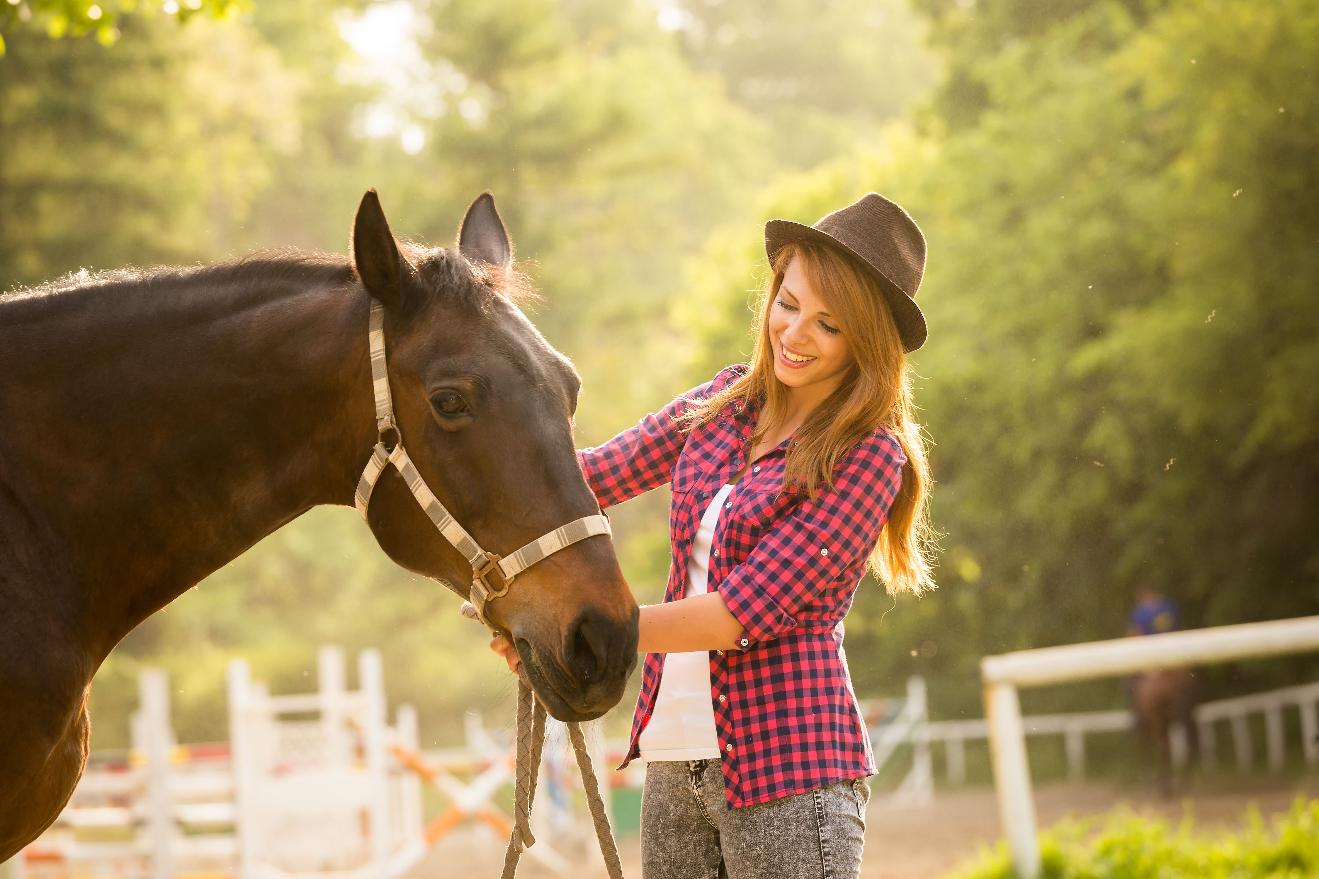 A team of psychologists led by the University of Sussex has found that horses remember people's facial expressions, which allows them to identify individuals who may be a threat.