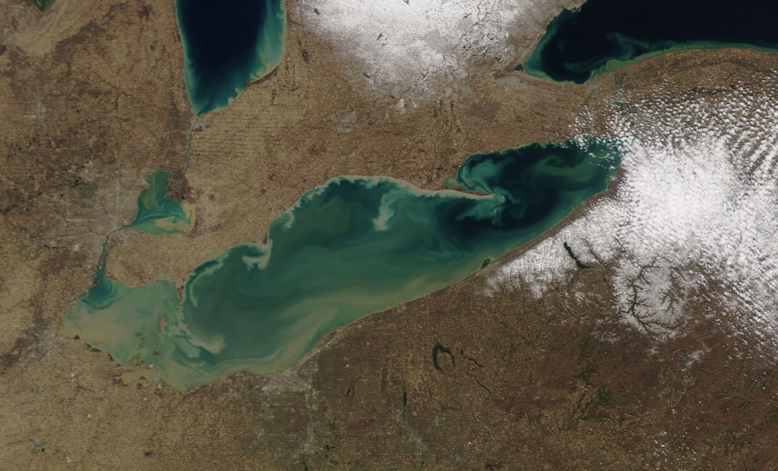 Today's Image of the Day comes from the NASA Earth Observatory and features a look at suspended sediment swirling in Lake Erie.