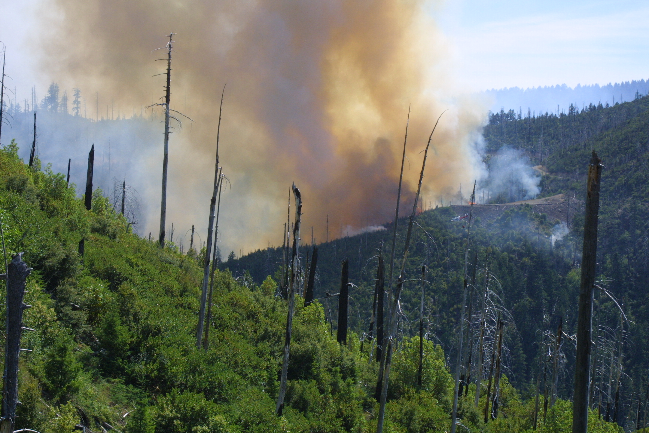 New research has found that global warming will increase the frequency of summer droughts and wildfires in the forested Klamath region of the Pacific Northwest.