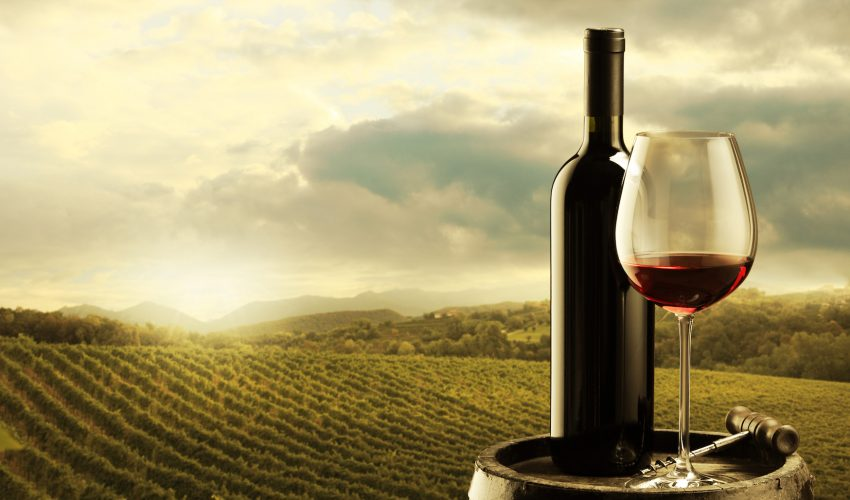 A new approach uses weather information and the Liv-ex 100 index, and predicts a slight price increase this year for the 2017 vintage wine.