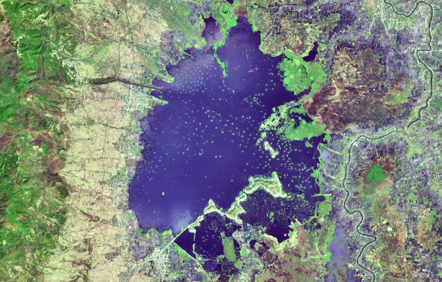 "Today's Image of the Day comes from the NASA Earth Observatory and features a look at Loktak Lake, India, which contains circular floating islands called ""phumdis."""