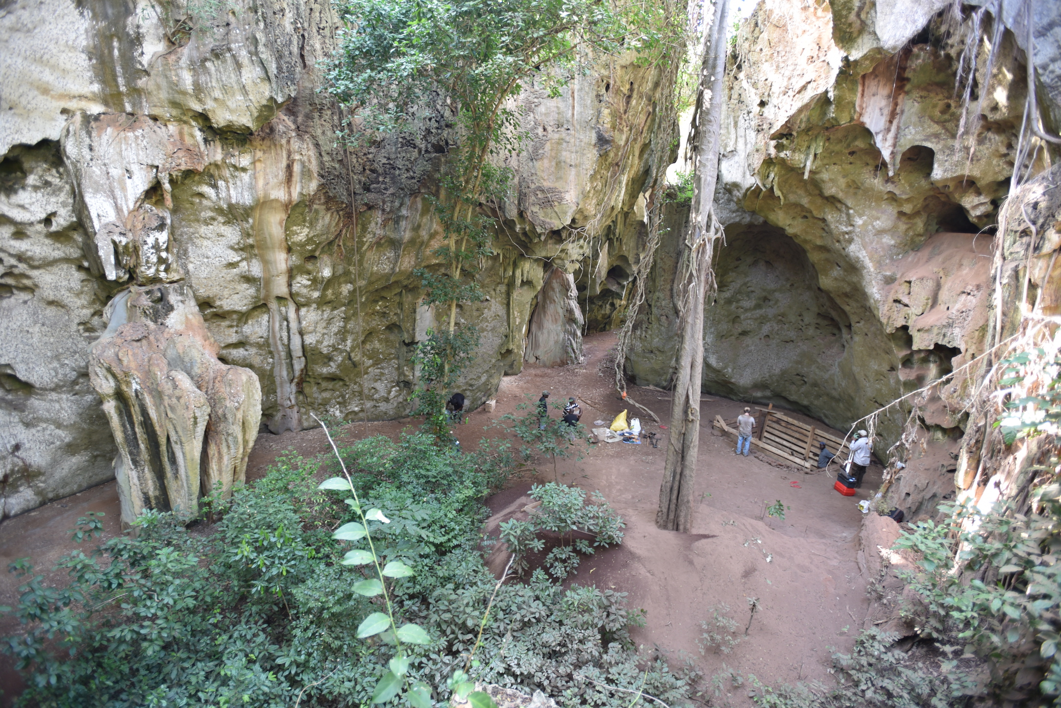 An international team of researchers has discovered a major cave site along the East African coast. Panga ya Saidi represents the first substantial cave record from the Middle Stone Age to the Iron Age in this region.