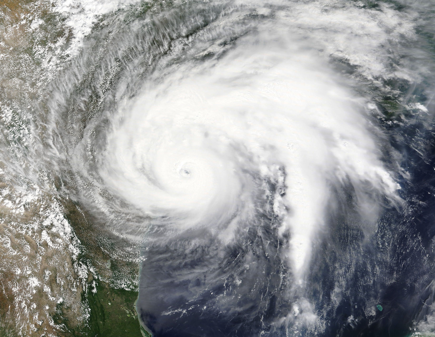 The hottest ocean waters ever recorded in the Gulf of Mexico fueled the strength of Hurricane Harvey, according to a new study.