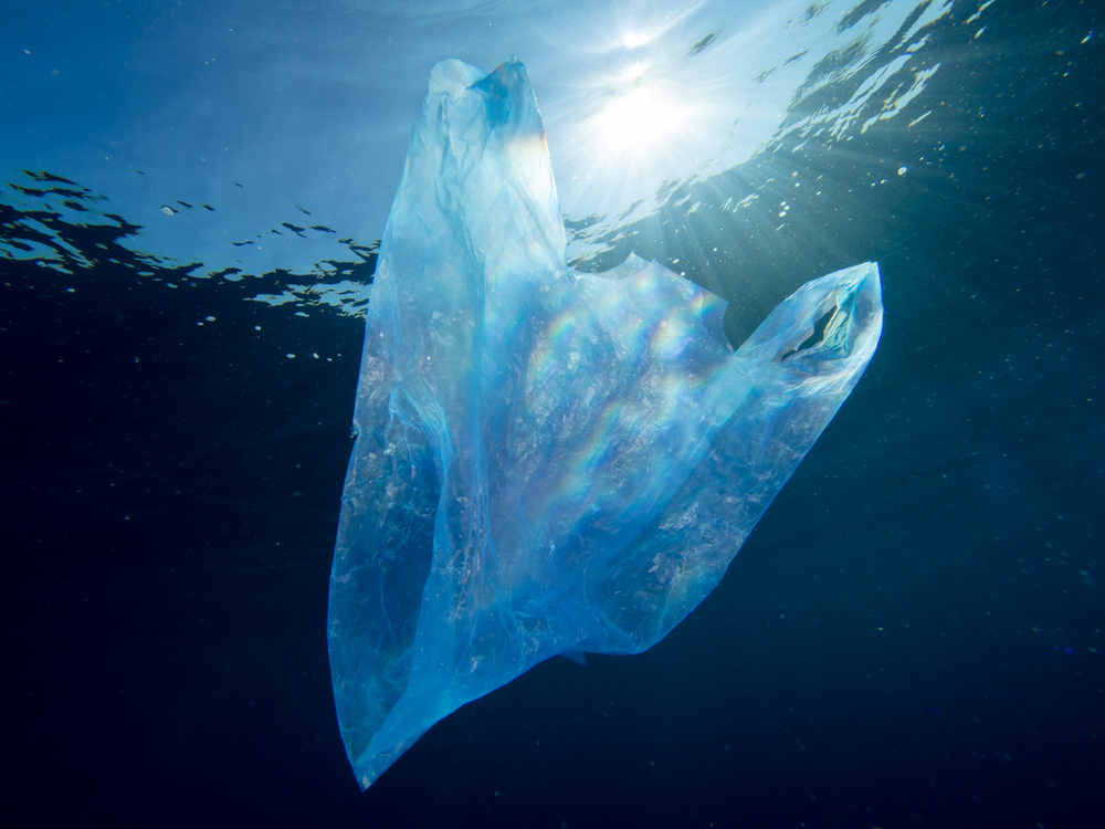 A plastic bag floats in the ocean. Plastic trash has been discovered deep below the Pacific's surface, including in the Mariana Trench.