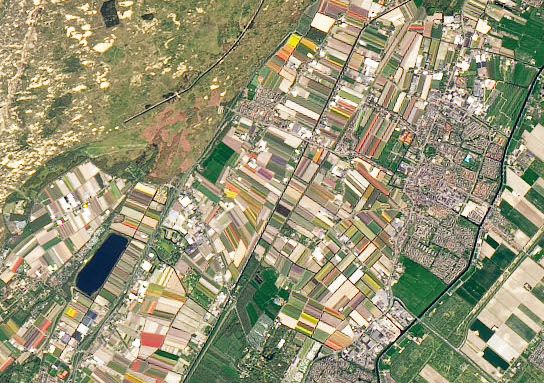 Today's Image of the Day comes from the NASA Earth Observatory and features a look at the springtime flower fields of Keukenhof Garden in the Netherlands.