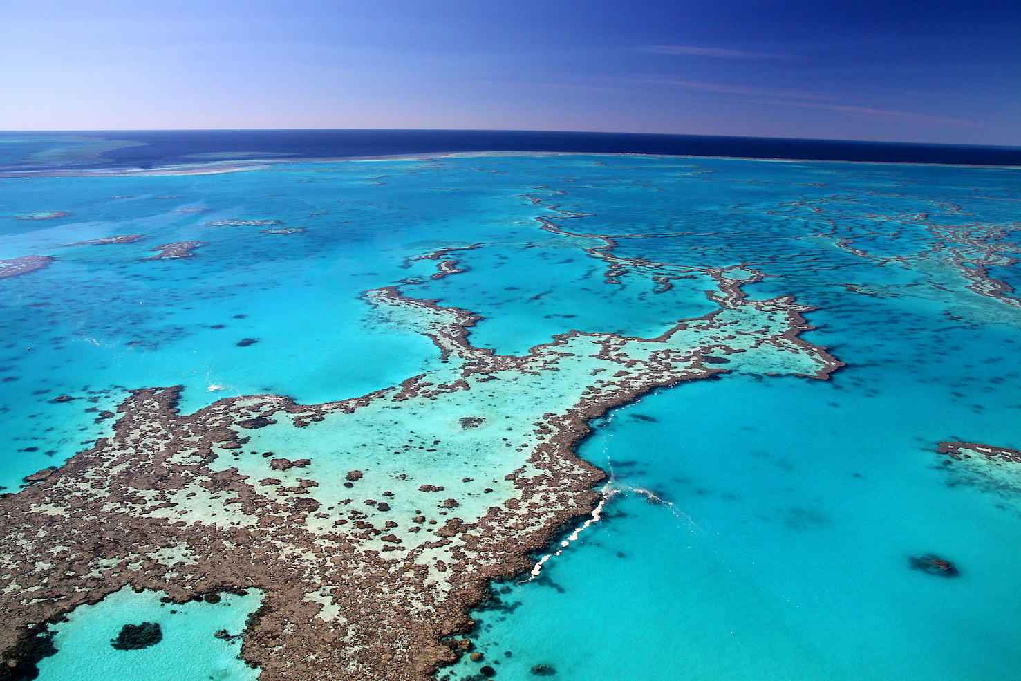 Researchers found that the Great Barrier Reef has suffered 5 death events driven by sea-level changes, and in response to these changes, the reef migrated across the ocean floor.