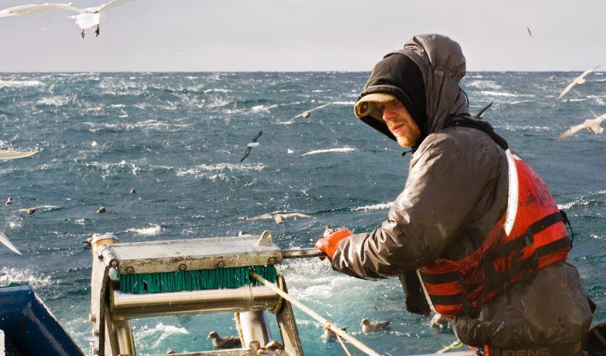 A new tool could help fishermen increase their yields while still protecting at-risk species to the benefit of both the fishing industry and conservationists.