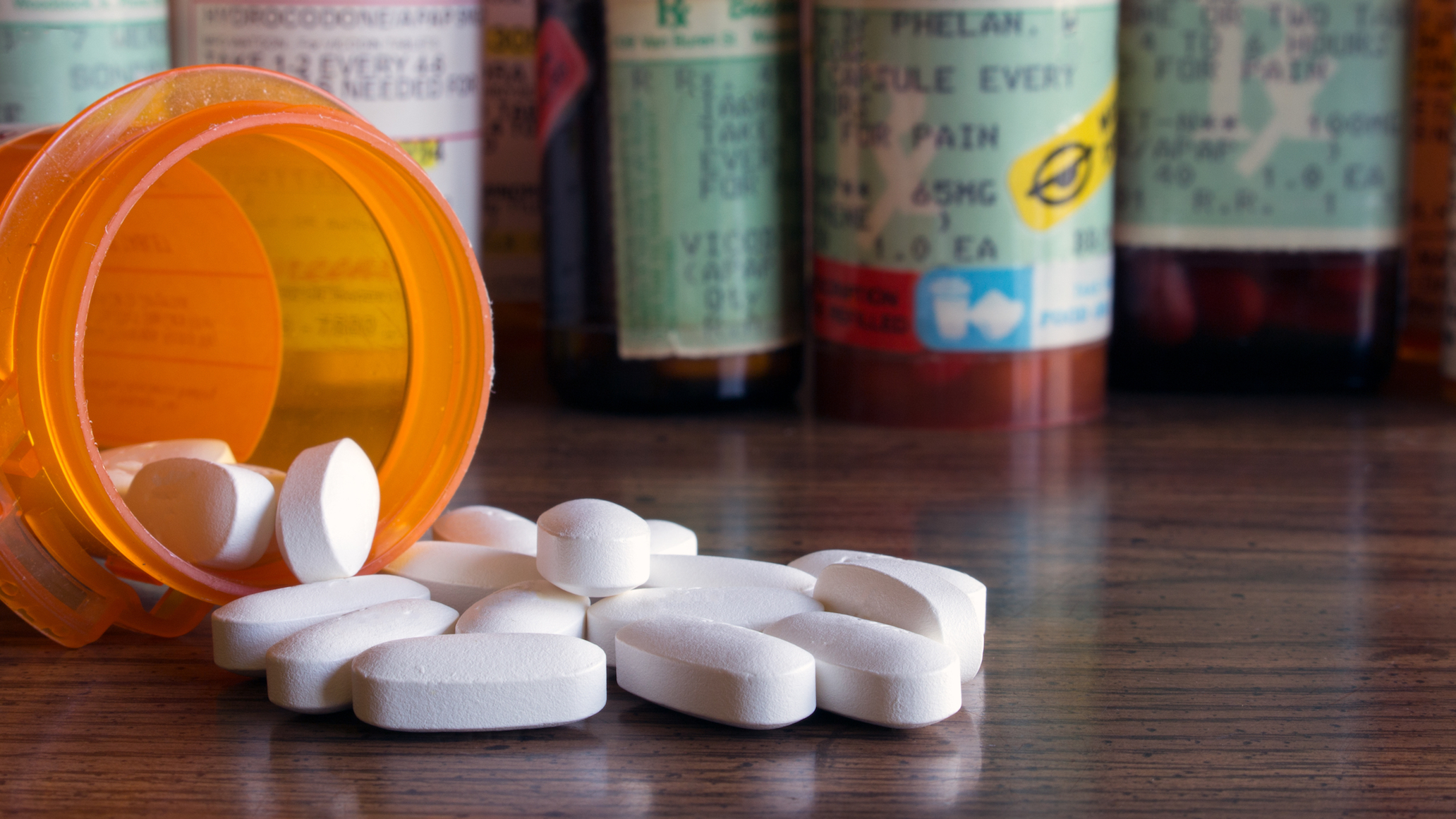 A study led by St. Michael's Hospital in Toronto has found that one out of every five deaths among young adults in the United States can be attributed to opioids.
