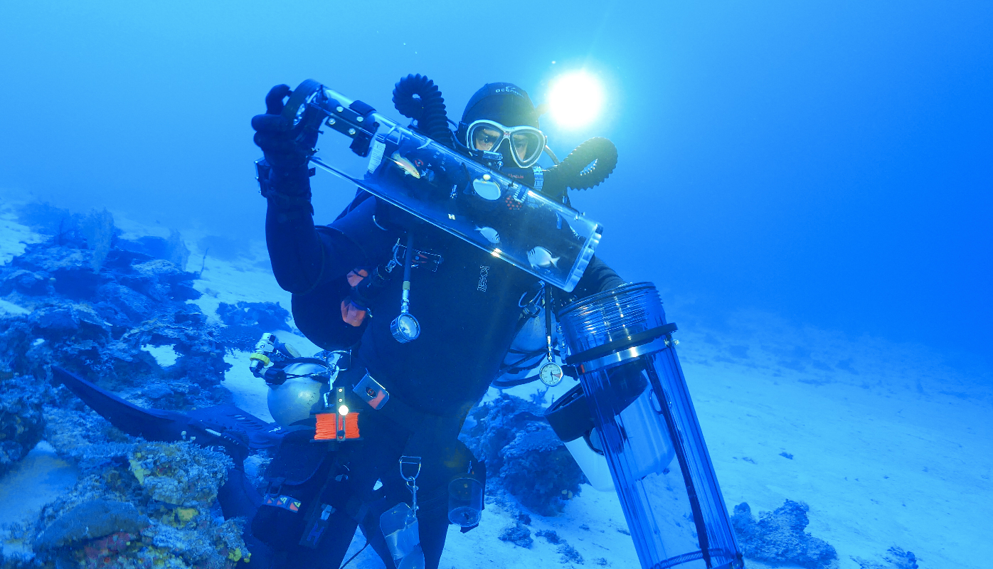 Researchers are now getting a rare look into unexplored reef habitats deep below the ocean's surface thanks to a new device that allows for the transport of marine species.