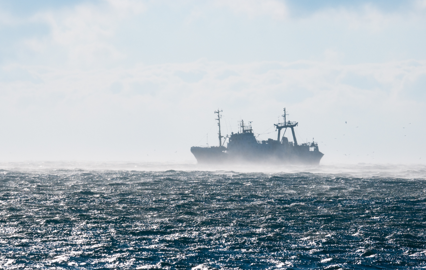 Fishing on the high seas, which covers 64 percent of the ocean's surface, is unprofitable if not for government subsidies, according to a new extensive report covering the economics of fishing.