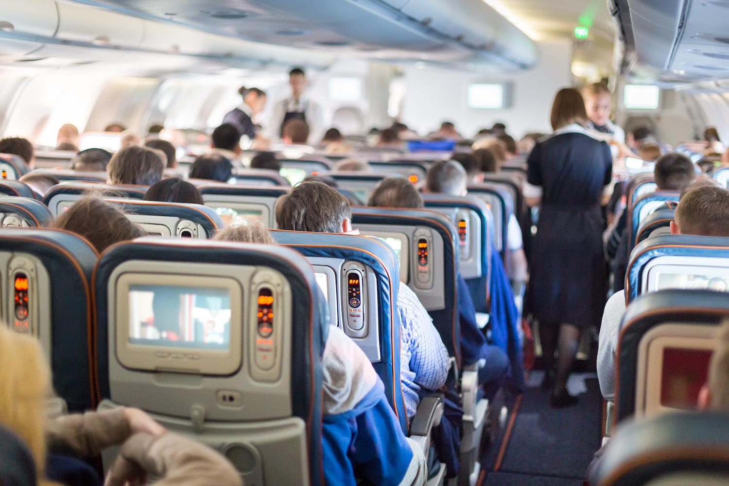 A new study conducted by researchers from Georgia Tech and Emory University found that airplanes contain the same kinds of microbiomes, or communities of bacteria, that are found in homes and offices.