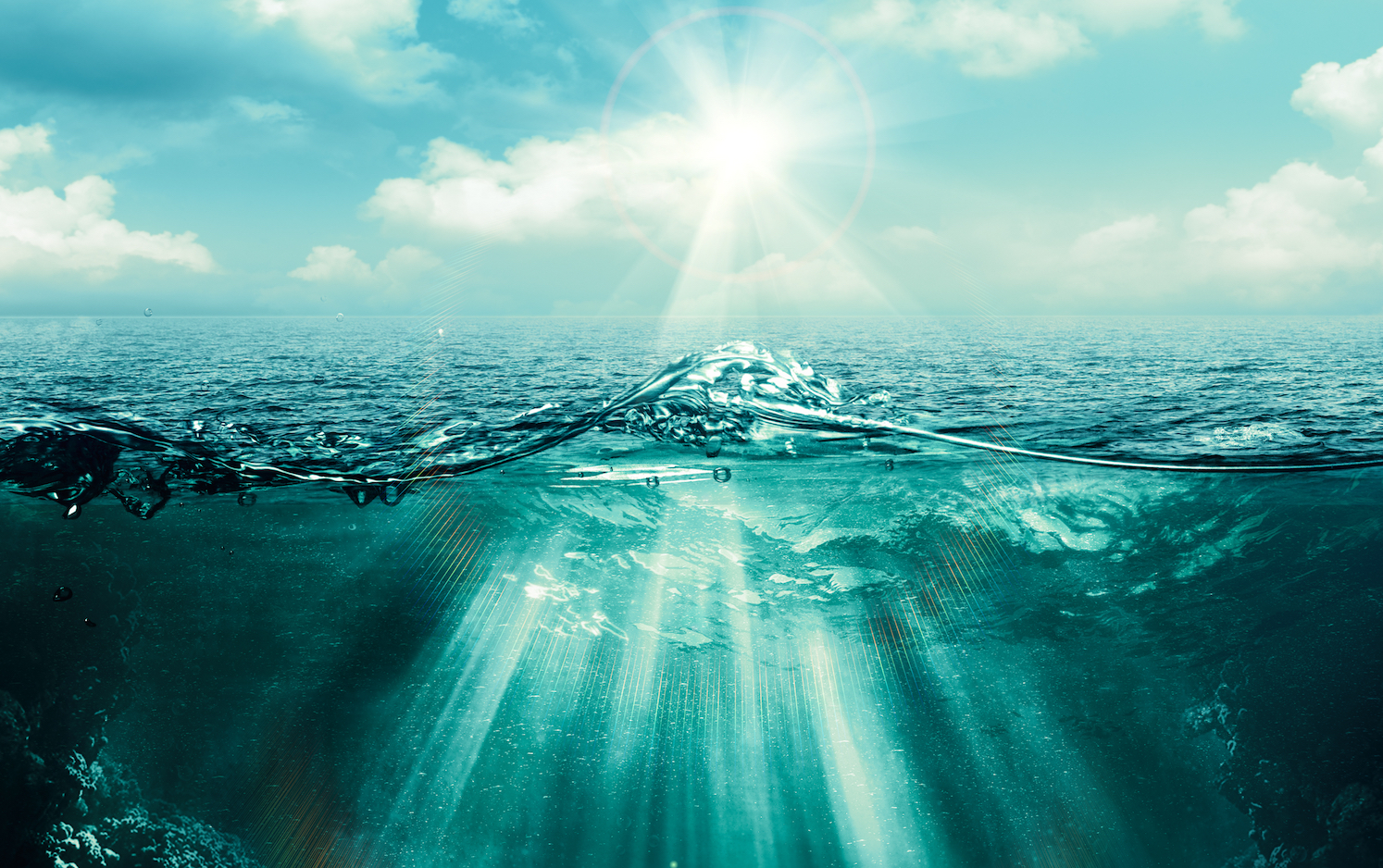 The world's oceans are losing oxygen,but the technology to model this loss and project future rates of deoxygenation is insufficient, according to a new study.