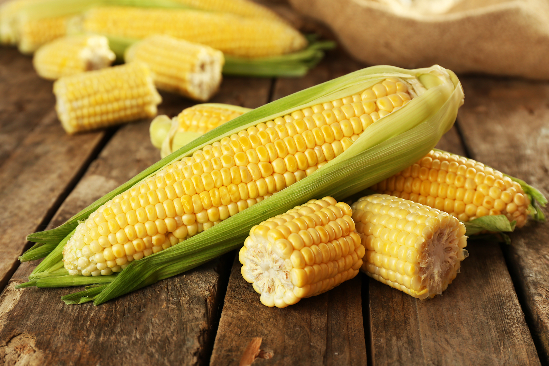 A new study led by the University of Washington has confirmed the theory that higher temperatures associated with global warming will lead to smaller yields of corn across the world by the end of the century.