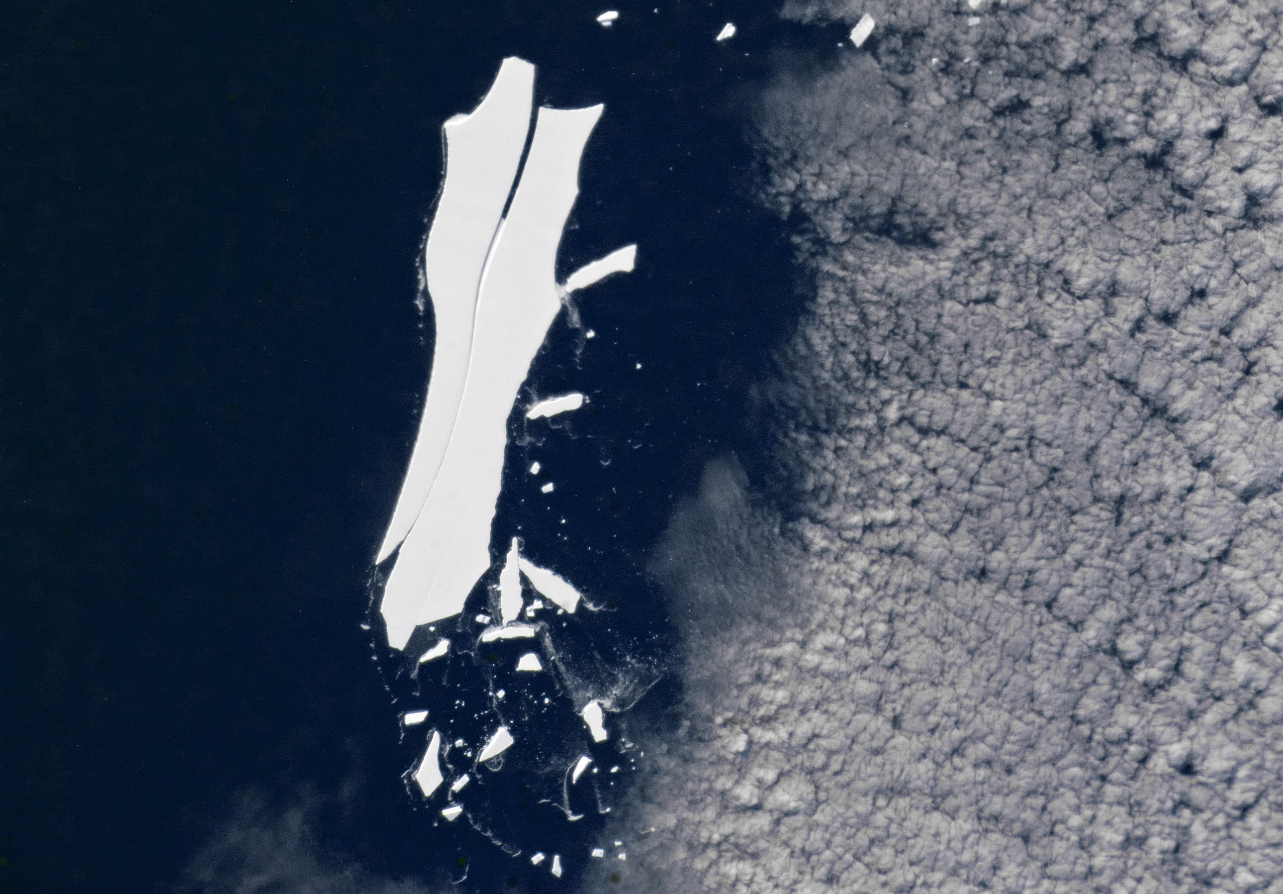 After 18 years of drifting around at sea, the world's largest iceberg will soon vanish forever near the Equator.