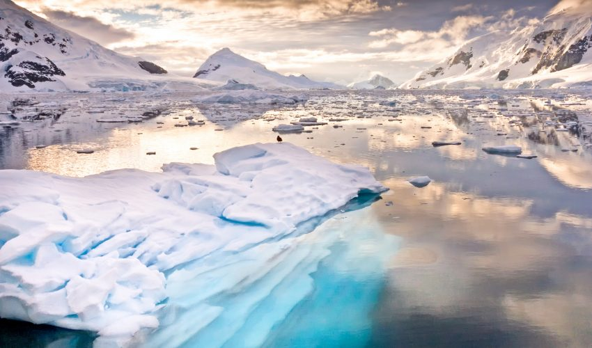 The plastic pollution crisis has reached as far as Antarctica, where researchers have found microplastics despite no human population.