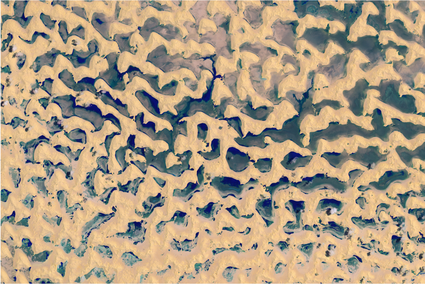 Today's Image of the Day comes from the NASA Earth Observatory and features a look at rainwater in Rub' al-Khali, the largest contiguous desert in the world.