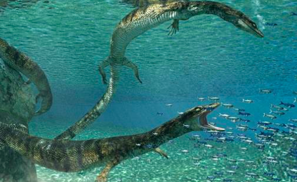 Paleontologists from the University of Alberta have discovered the remains of a new species of marine lizard in Puglia, Italy.