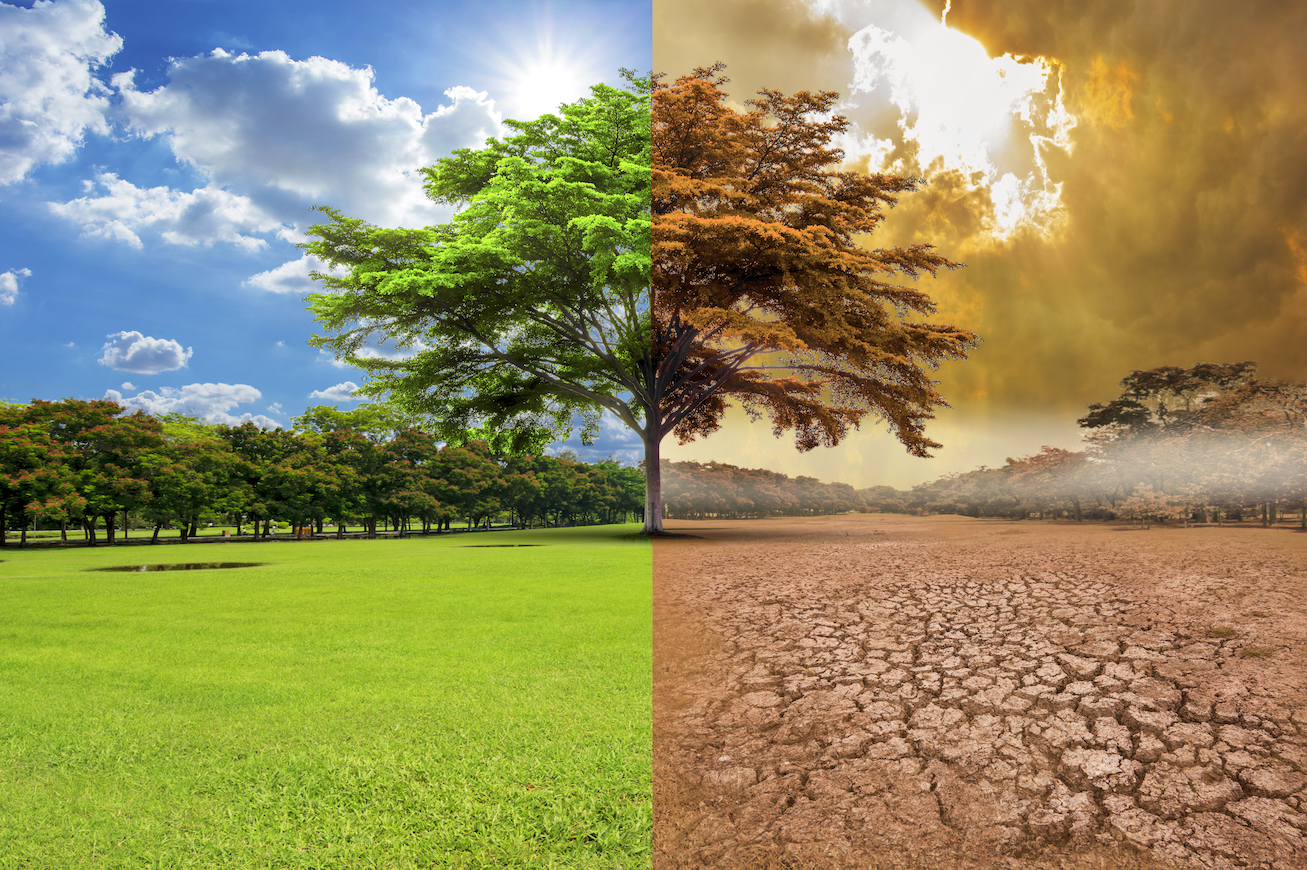 Climate models are drastically underestimating future warming trends and temperatures could double what has been predicted.