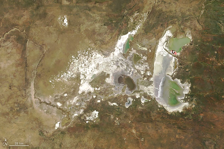 Today's Image of the Day from NASA Earth Observatory features one of the largest salt pans in the world, which covers 10,000 square miles of desert and dry savanna in Botswana.