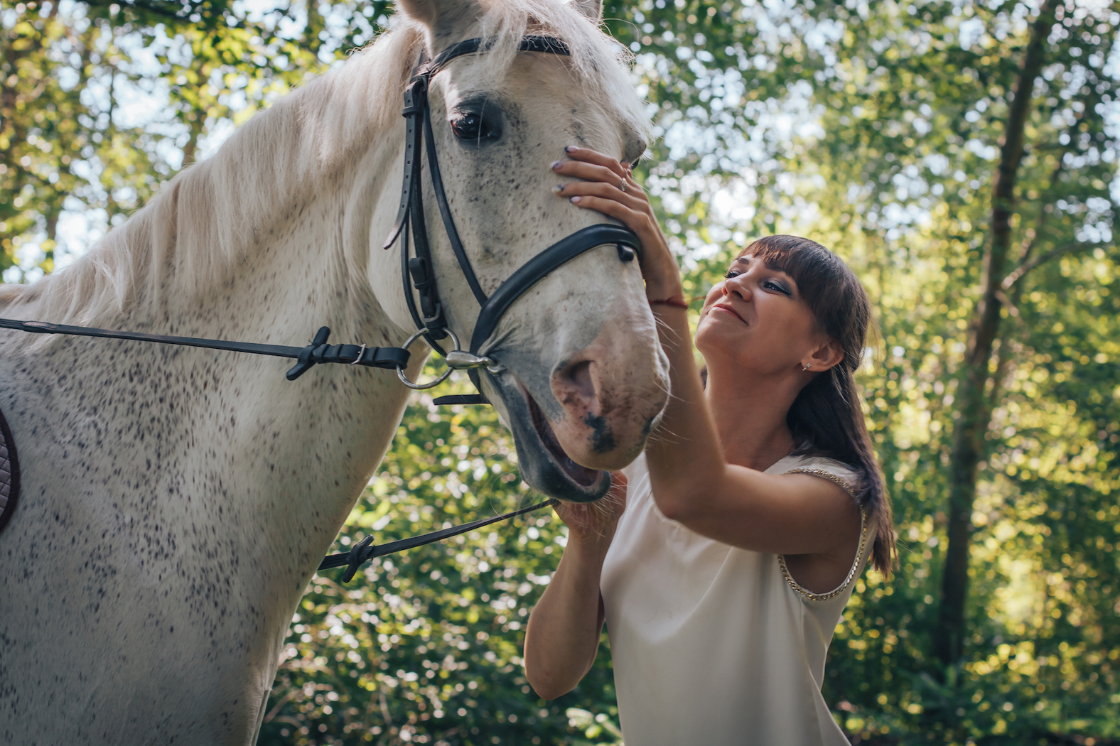 """Anecdotal reports have pointed towards the prevalence of horses producing """"snorts"""" when they are in positive situations."""