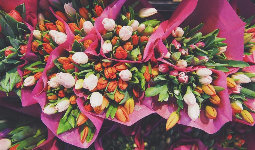 Patients in hospitals who have fresh flowers in their rooms require less pain medication and experience lower levels of anxiety.