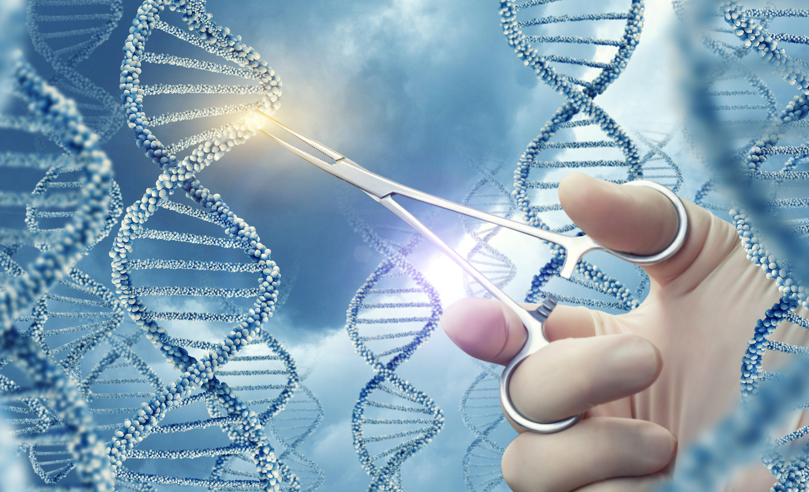 A new survey has found that the majority of Americans agree with gene editing when it has a goal of improving the health of babies.