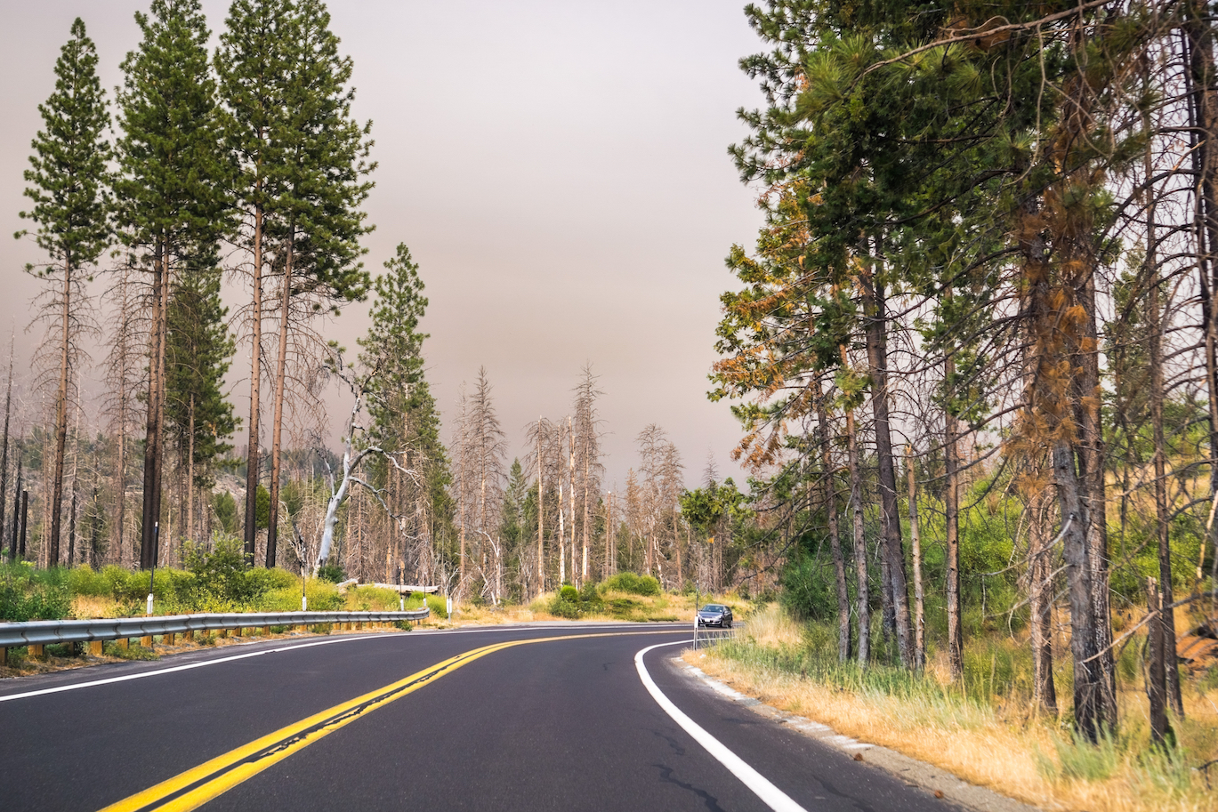 On Wednesday, July 25th, the Ferguson Fire in California intensified, prompting park closures around Yosemite Valley.