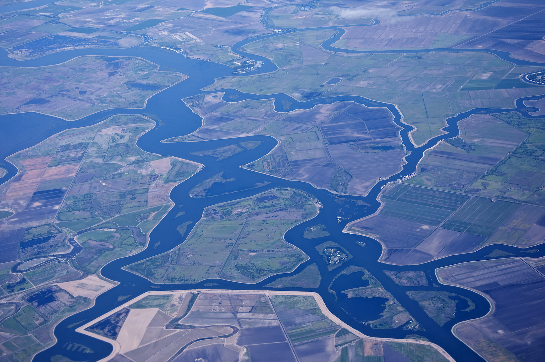 Despite the cancer-causing risks of the herbicide Roundup, the chemical is being used along the Sacramento, San Joaquin River Delta.