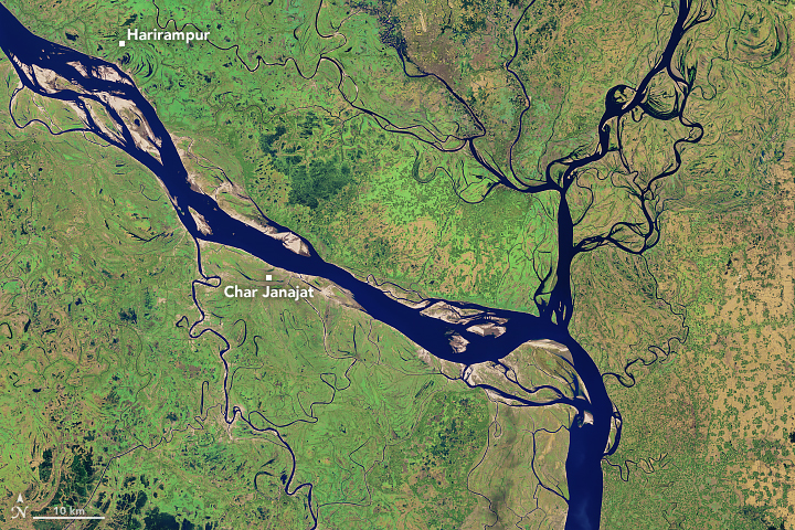Today's Image of the Day from NASA Earth Observatoryhighlights the dynamic nature of the Padma River in Bangladesh.