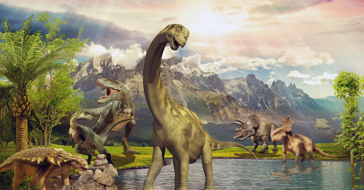 Dinosaurs may have stopped and smelled the roses as far back as the mid-Cretaceous period, according to a new study.