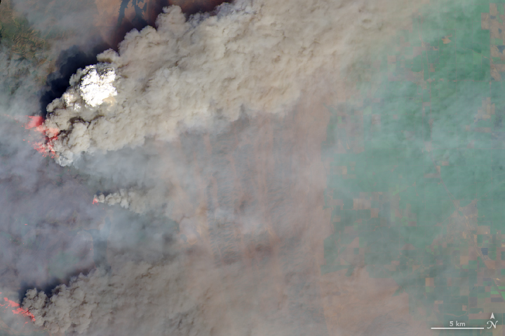 Today's Image of the Day from NASA Earth Observatory features a massive smoke plume that is visible over one of the 12 wildlifes that are currently active in the state of California.