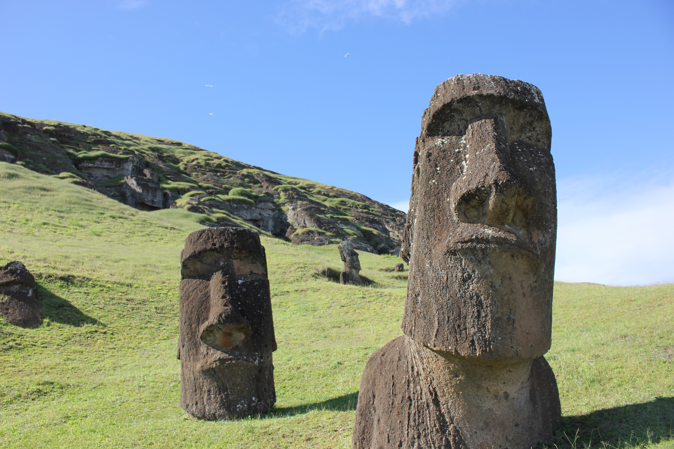New evidence suggests that the ancient society of Easter Island was much more sophisticated and cooperative than previously thought.