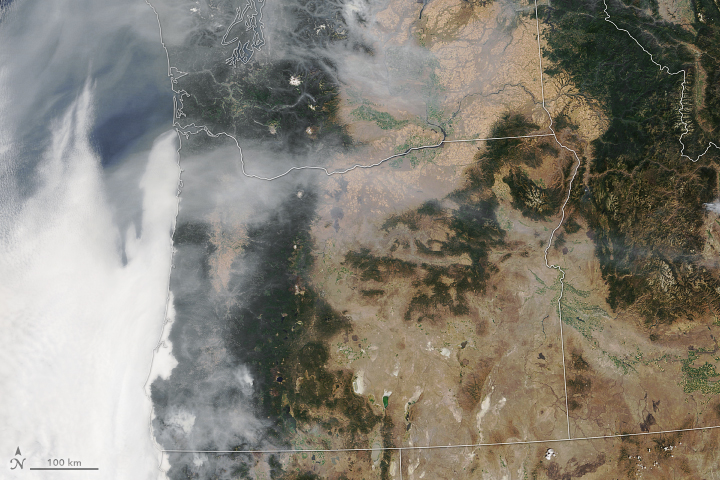 Today's Image of the Day from NASA Earth Observatory shows the massive amount of smoke produced by fires in Oregon.