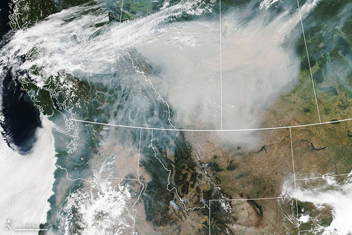 Today's Image of the Day from NASA Earth Observatory shows smoke from wildfires in the western United States and Canada. Wind has carried the thick smoke plumes across the continent.