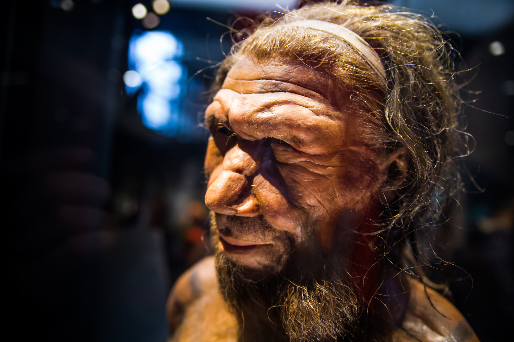 humans as a distinct species A 'distinct human species' could have lived on the island of sulawesi- the gateway to the vast zone of islands between continental asia and australia - 50,000 years ago a mystical ancient.