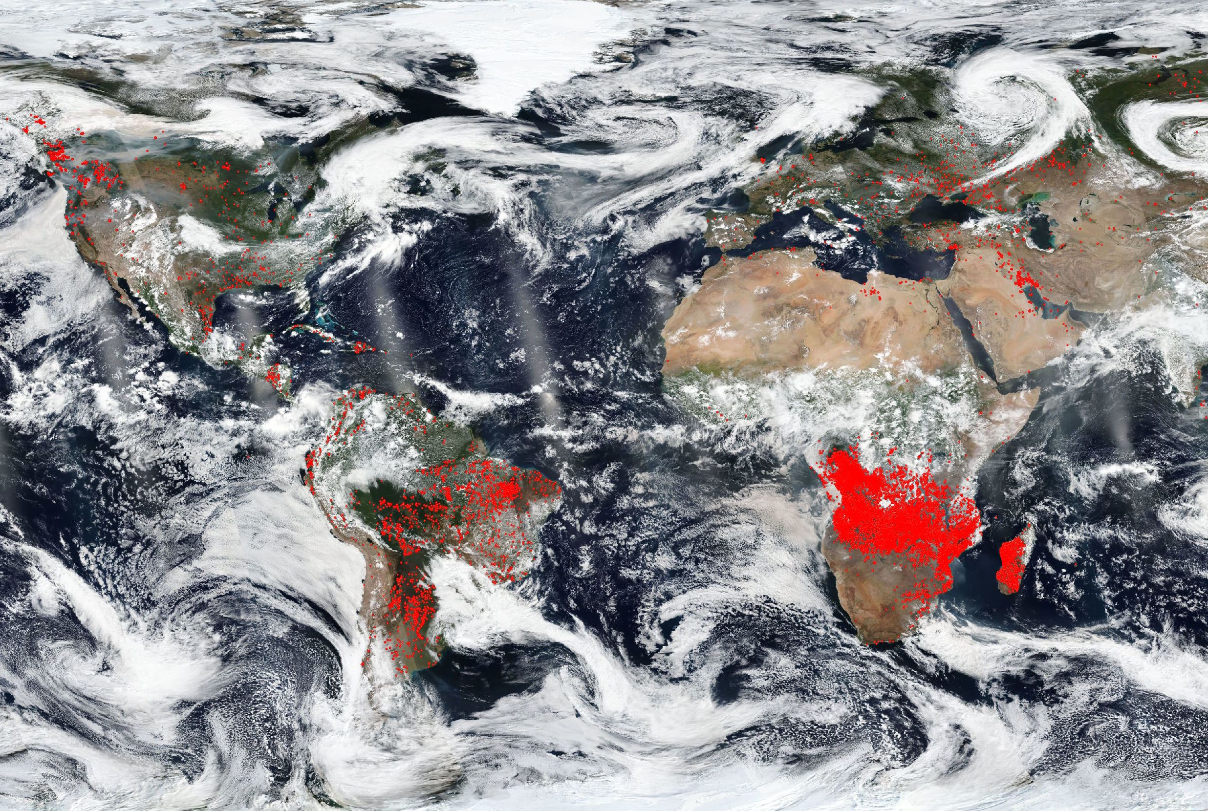 A new image from the NASA Worldview shows the Earth covered in concentrated patches of red dots which represent the actively burning fires.
