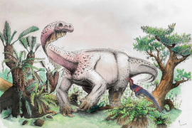 A new species of dinosaur sheds light on the earliest dinosaurs from the Jurassic period during the Mesozoic era.