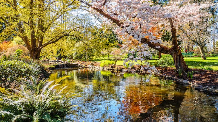 Earlier springs may give plants a head start initially, but a new study has found it doesn't benefit plant productivity in the long run.