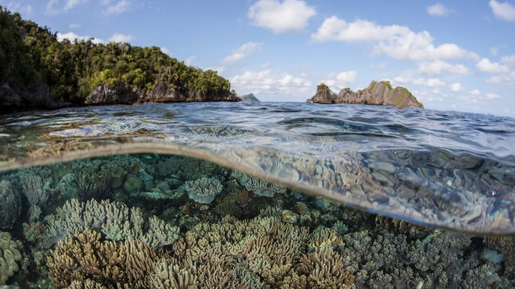 Researchers have provided a review of thirteen ocean-based measures that could potentially reduce the effects of climate change.